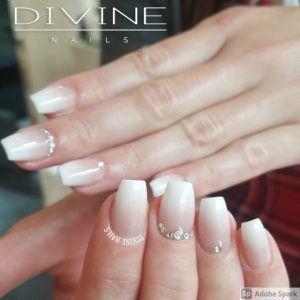 Divine Nails Red Deer - Neutral Ombre Nails